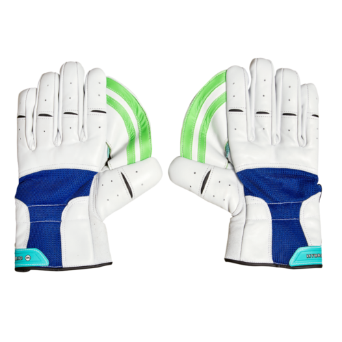 Gloves Hybrid Indoor Wicket Keeping 1